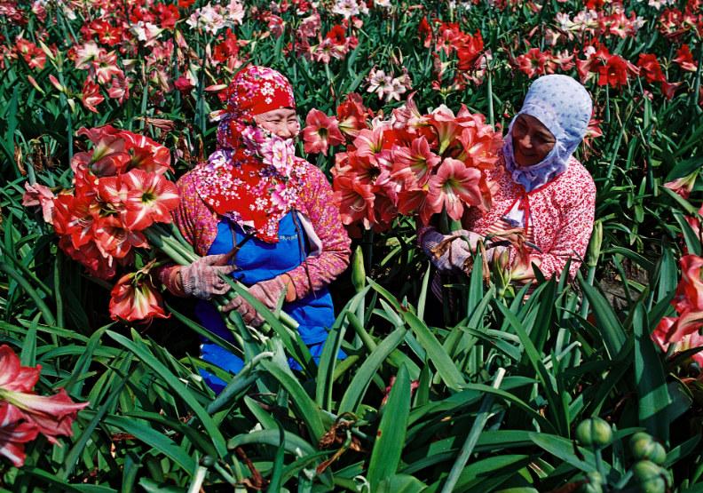 返鄉深耕在地價值,「地方創生」翻轉農村經濟