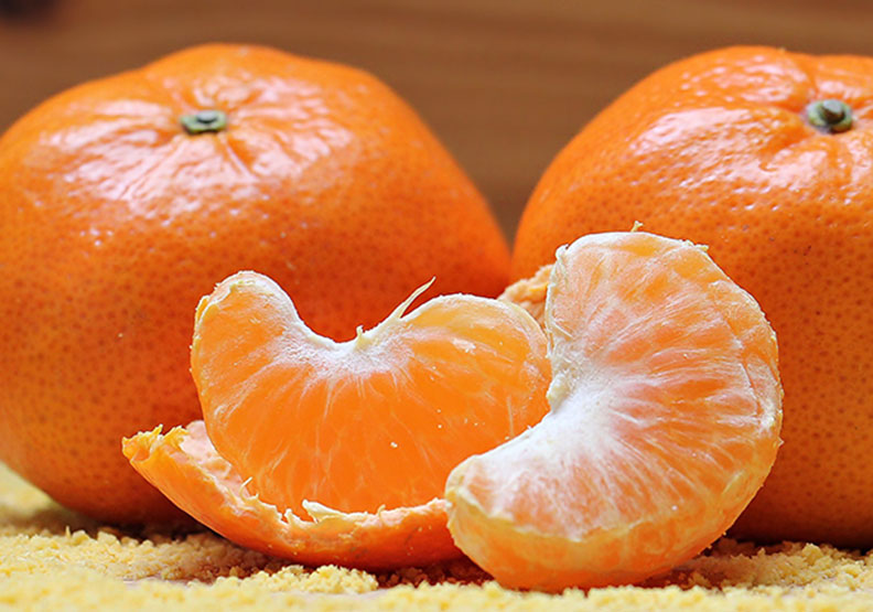 台灣的冬季水果王「柑橘」,你認識哪幾種?