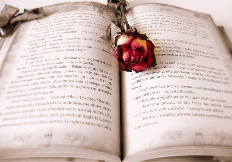辛波絲卡為你讀詩:割捨不下的〈與回憶共處的艱辛時光〉
