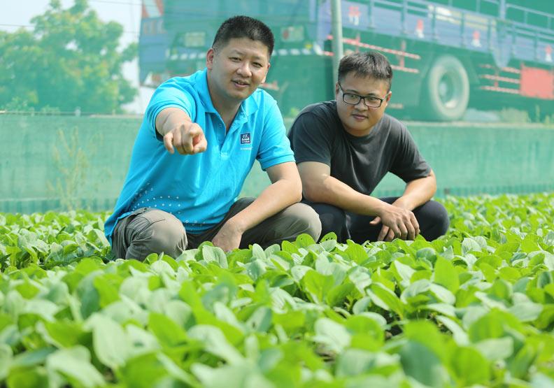 賣肥料卻勸農民少施肥,這家雲林小店想什麼?