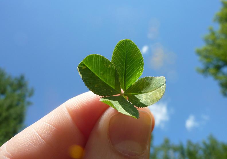 找到幸運的態度:「相信你」可以創造運氣