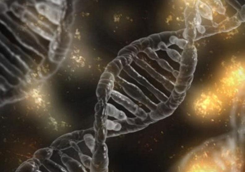 窮到骨子裡!美研究指出:低社經地位影響基因傳給後代