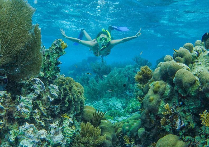 不讓化學物質汙染大海!帛琉成全球首個禁用防曬的國家