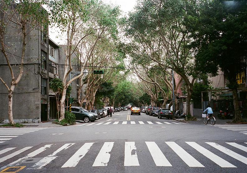 台北的溫柔,在街巷中找的到