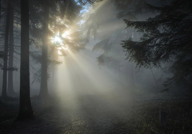 人生不可能永遠有光,遇上黑暗時,你要成為自己的光