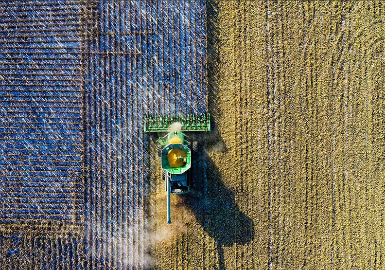 一場全國性的農地實驗,改寫了愛爾蘭的未來