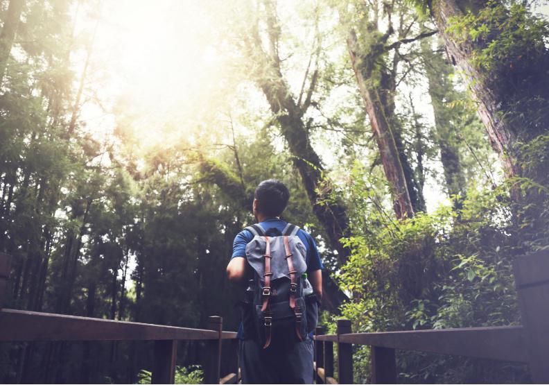 為什麼對年輕人來說,返鄉成了最遠的一條路?