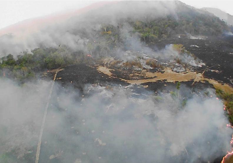 太空都看得見!亞馬遜雨林大火「每分鐘燒掉1.5個足球場」