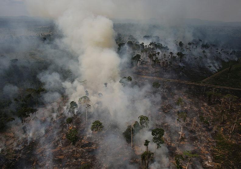 亞馬遜森林史上最慘火災,「地球之肺」恐變草原?
