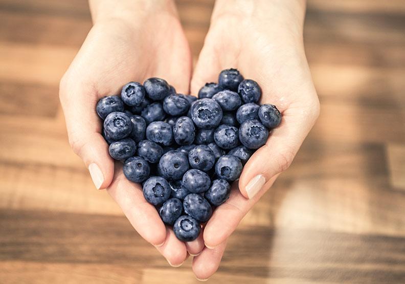 肥胖族福音!英研究:每天吃藍莓可保護心臟健康