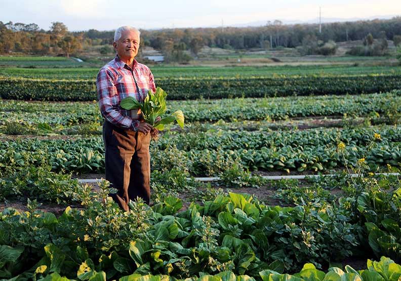 農業4.0力抗極端氣候 澳洲挑戰2030年產值翻倍