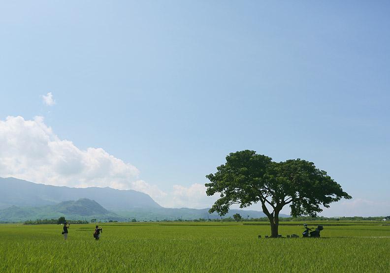地、情、人、蘊四大軟實力 讓世界看見台灣