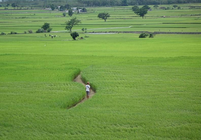 拾回人與土地的關係 《農村的遠見》從4國經驗看回台灣