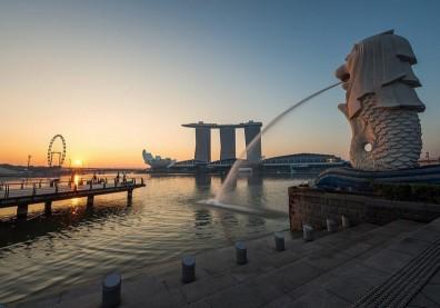 新加坡靠「抗疫策略3部曲」成防疫優等生!強化追蹤是致勝關鍵