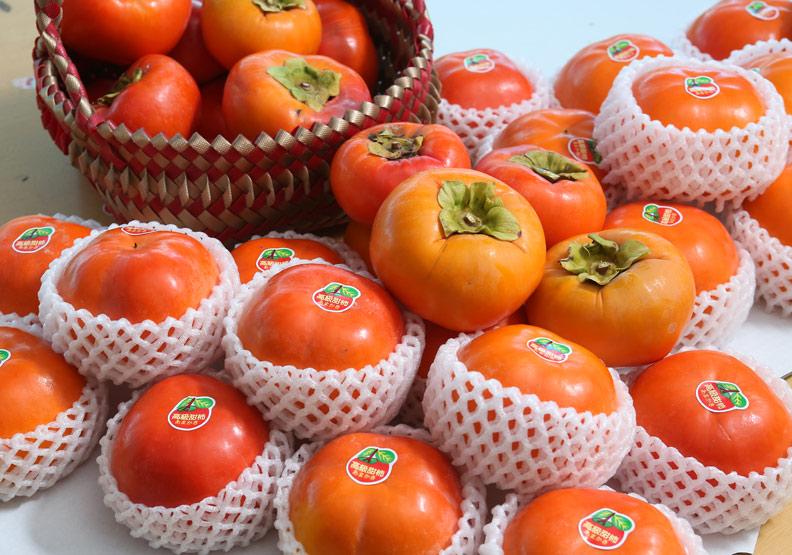 柿子;蘇義傑攝。