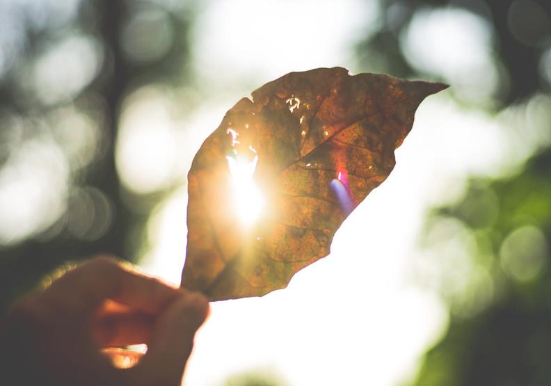 到外面走走、曬太陽,會讓憂鬱的自己好一點。(僅為情境配圖,取自pexels)