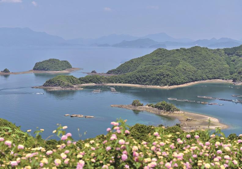 日本長島町「鰤魚獎學金」出奇招 拉青年返鄉創熱潮