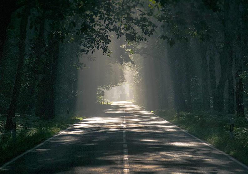 【爸爸如太陽,大姊是月亮】他們照亮我成長的路,沒有一刻偏離正途!
