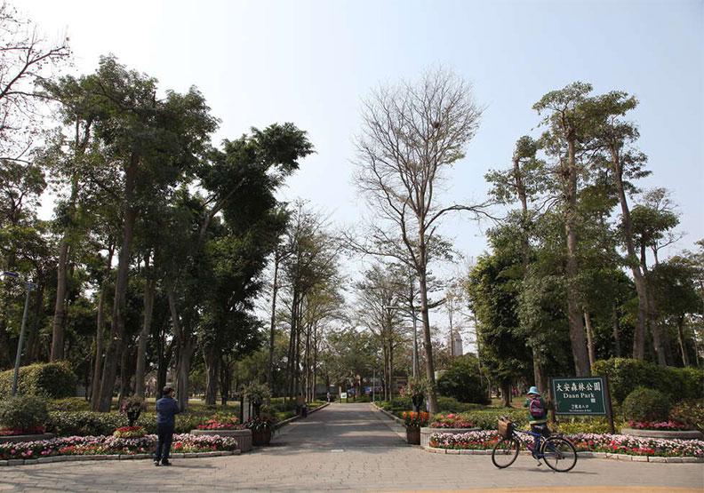 大安森林公園以前長這樣!台北人:住30年多現在才知道