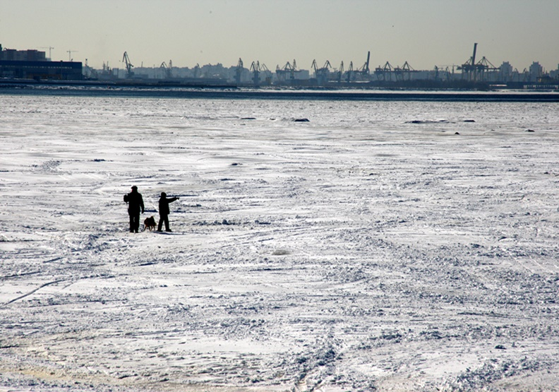 「氣候緊急狀態」成年度熱門字!人擠人的城市該怎麼辦?