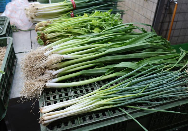青蔥、青蒜兩撇步區分,蒜還多了這個營養能穩定血糖