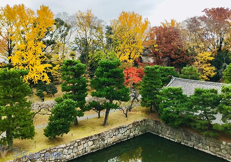 哈日族推薦!京都賞楓祕境,靜謐又古色古香的二條城
