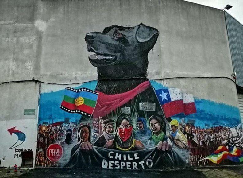 過去參與多次示威運動的黑狗,如今成為智利民眾的反政府意象之一。(圖片提供:Sebastián Rueda)