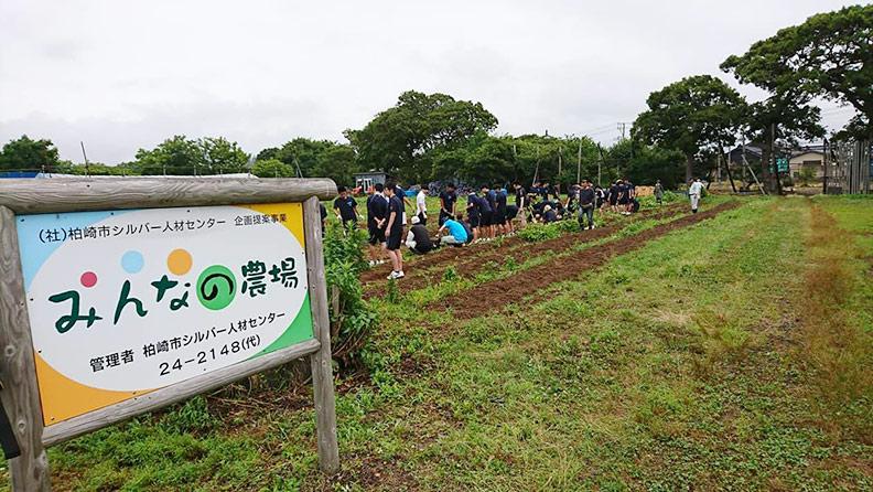 銀髮農園是居民大家的農園,有興趣的人都可以來栽種;