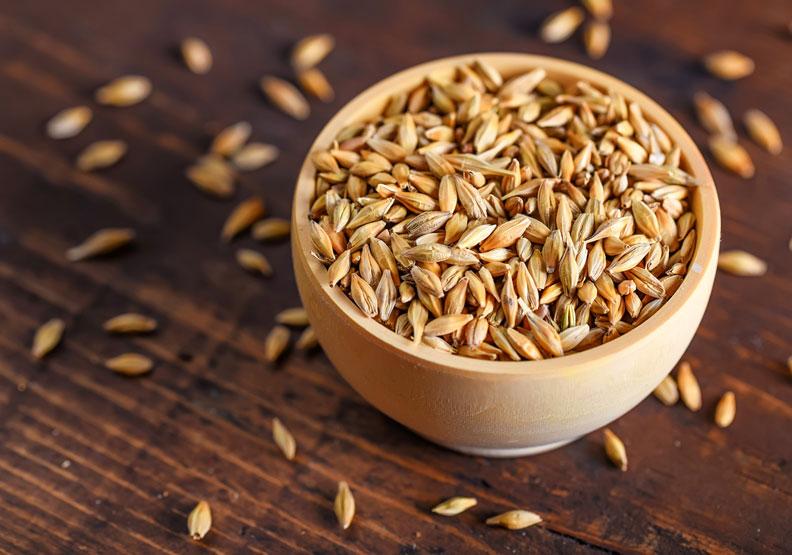 「超級大麥」膳食纖維比一般大麥多10%,還能調節消化道、助排便