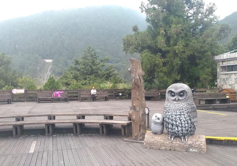 太平山莊服務站廣場的灰林鴞大型公仔。林務局羅東林區管理處提供
