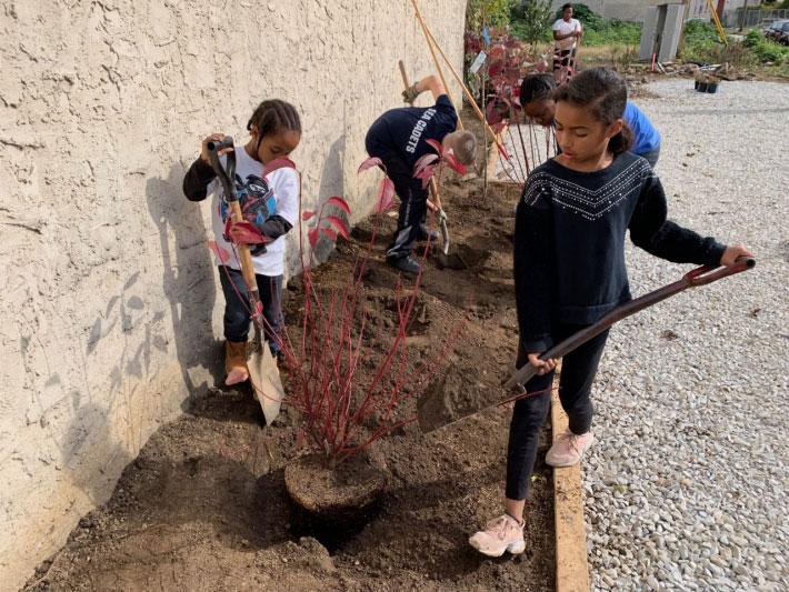 社區居民可以自行動手將公園完成,僅需不到一週的時間。來源:Thomas Jefferson University