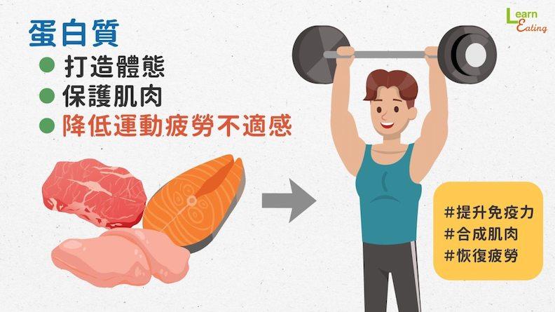 蛋白質打造體態、保護肌肉,降低運動疲勞不適感。