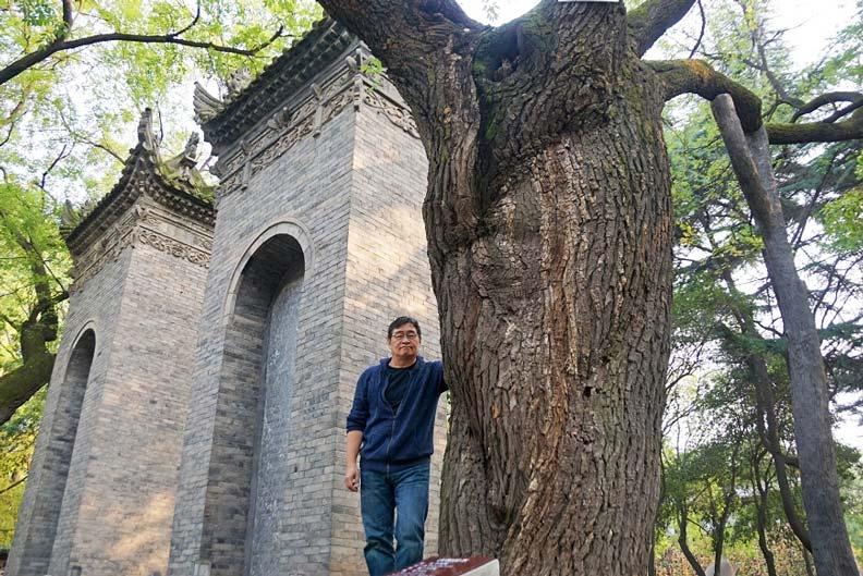 在西安小雁塔寺,王浩一與千年槐樹合影。