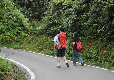 每天散步吧!心臟外科醫師:永不過時的養生方法