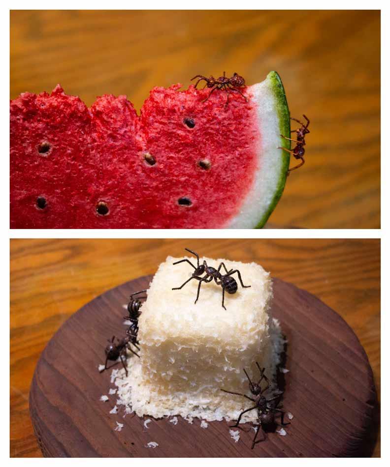 螞蟻系列是葉發原的得意作品。