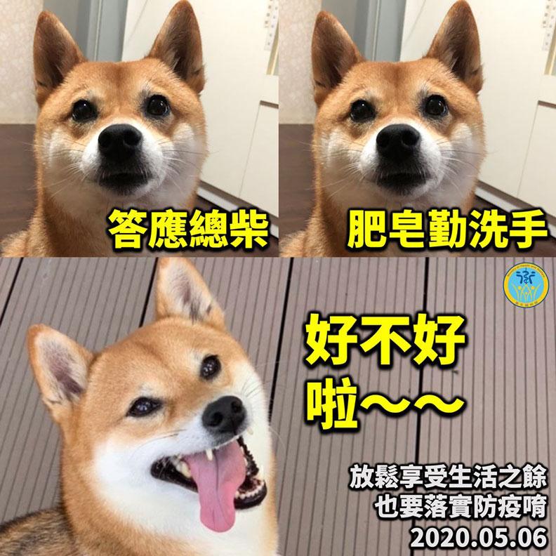 衛福部吉祥物「總柴」。取自衛生福利部臉書
