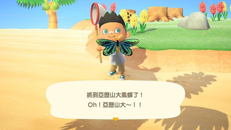 遊戲中的捕蟲功能;網友提供。