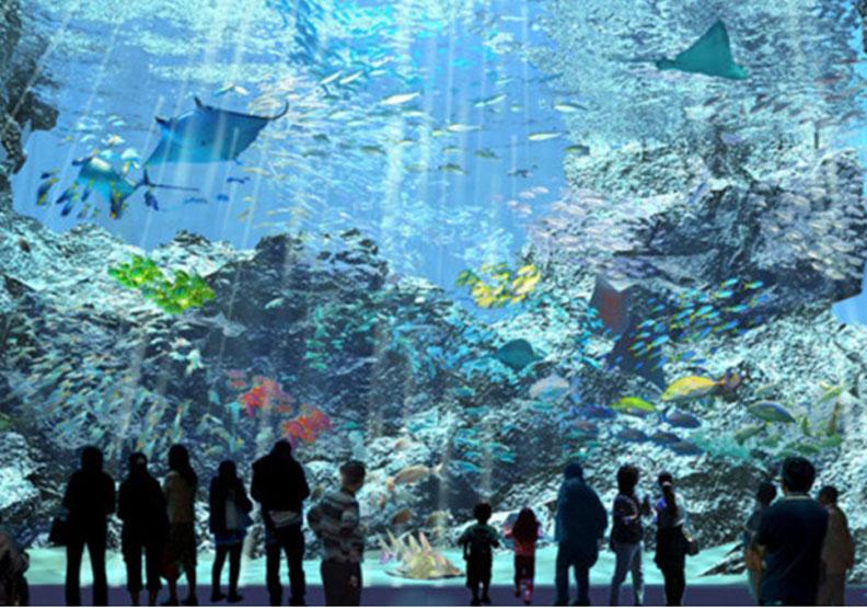 全台首座「國際級水族館」,下半年桃園開幕!