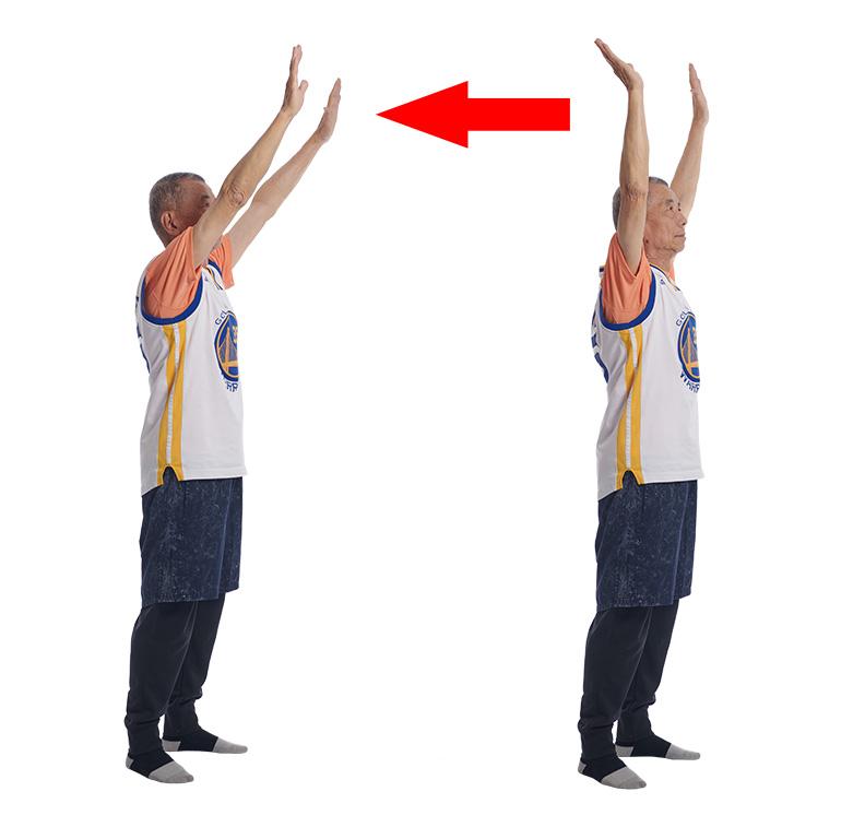 雙手抬高向後延伸可訓練到頸背的肌肉群。