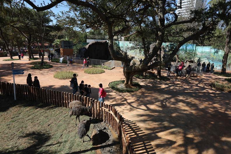 重新開幕、主打「共融」概念的新竹市立動物園,現在儼然是風城最夯的人氣景點。
