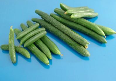 夏日鮮蔬小黃瓜低熱量又能養顏!這一招辨別鮮嫩良品