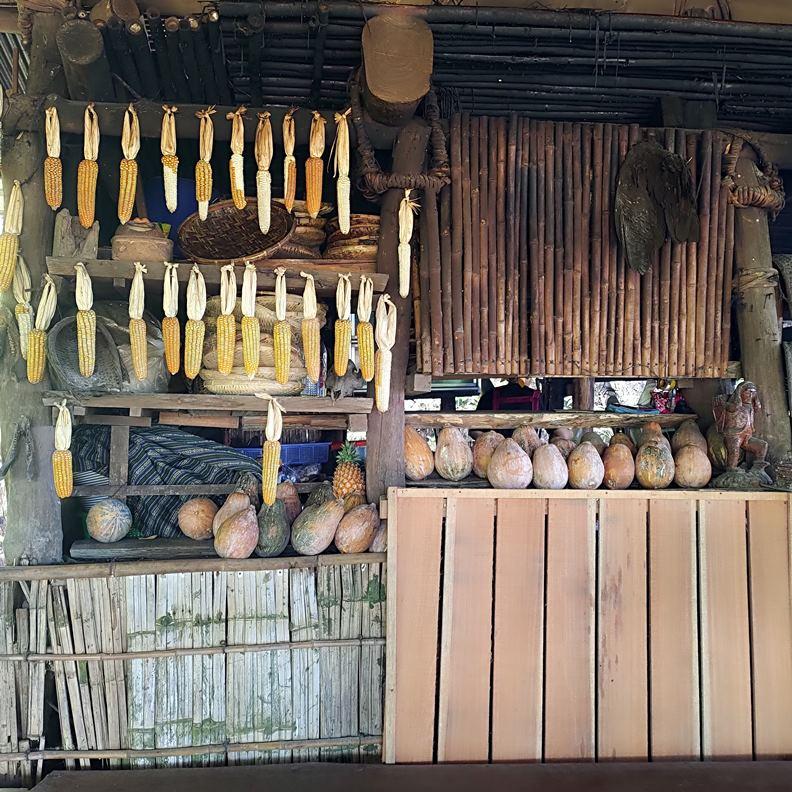 森林博物館的廚房