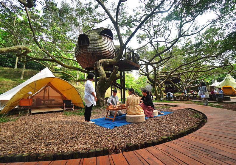 好夢里共有三個種子毬果造型的奇幻「樹屋」。