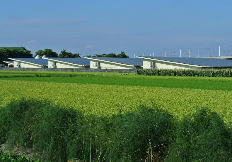 農業為本 綠電加值