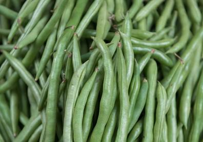 生吃四季豆小心拉肚子! 這些含「皂素」的食材都要煮熟