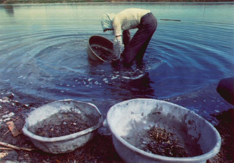 二仁溪-台灣污染最嚴重的惡水已數十年,廢五金、綠牡蠣的重度污染,終年如黑濁墨汁,時報基金會於1993年拍攝:由「蛻變重生的二仁溪-環境與人文變遷影像集」一書中翻拍。
