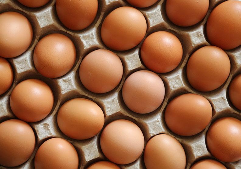 國人10大慢性食物過敏原排行大公開, 蛋白、蛋黃竟高居前兩名
