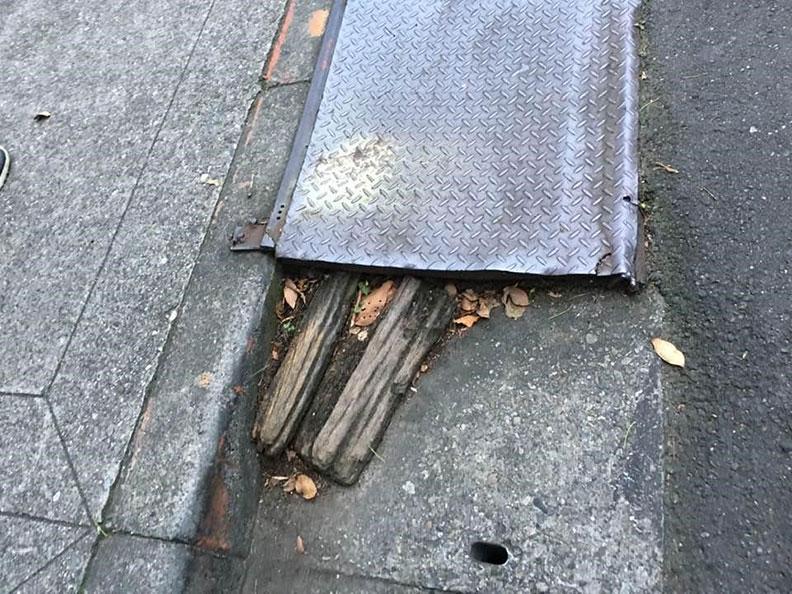 下雨後路面堆積樹葉或枯枝,增高跌倒的風險。