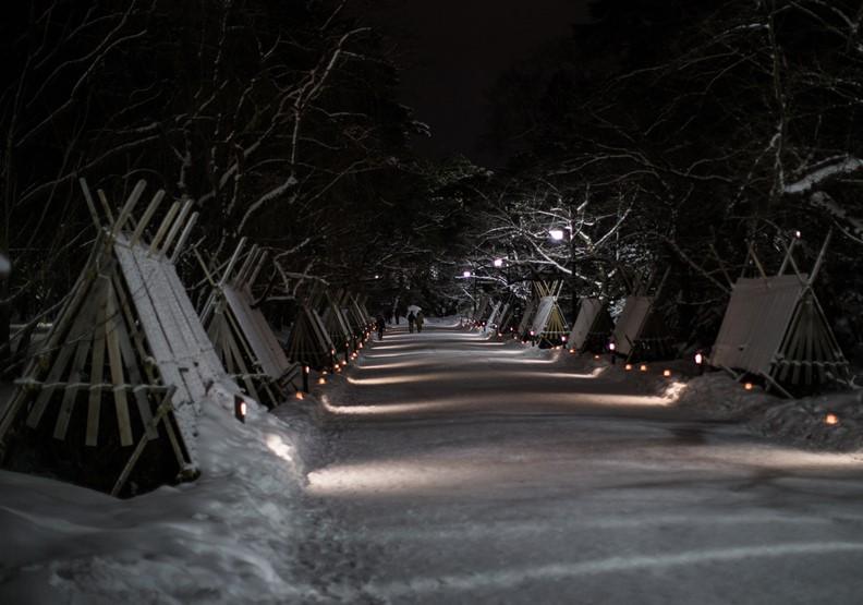 弘前雪燈籠祭。圖片來自青森縣觀光資訊網,©版權由青森縣所有