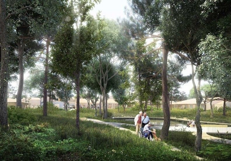 隨處可見的綠地和花園,讓人心情更放鬆。